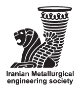iranian metallurgical engineering society
